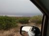 Daar vandaan rijdend zien we al op 107 km afstand ULURU (Ayers Rock)!