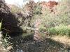 bij Kathleen Springs door water wordt gestopt!