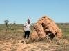 maar zulke termietenheuvels heeft Nederland toch niet…