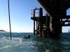 De volgende dag ga ik bij de Navy Pier duiken