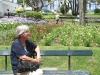 en parken vol bloeiende planten en struiken.struiken