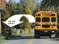 vooral als er een arrêtbordje uit een schoolbus klapt!