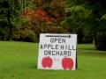en rijden ook naar een appelboomgaard,