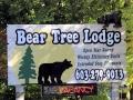 En nog gekker: van deze 'Beren Boom Lodge' in Meredith