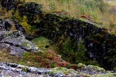 131 waar grote bodembreuken laten zien waar de Noord-Amerikaanse en de Europese tektonische platen op elkaar botsten.