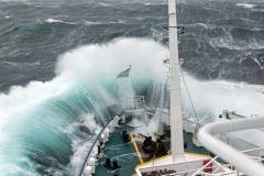 23 Dat zorgt dan gelijk voor heel veel zeezieken, maar ook voor deze mooie foto...