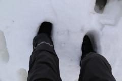 85 Tijdens deze zwerftocht zakken we wel even diep weg in de sneeuw,