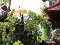 06 in deze mooie tuin