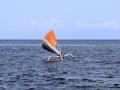 15 We racen daarmee langs zulke (voor mij veel mooiere) vissersbootjes