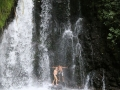 en loop ik door de jungle rond de Arenal en duik onder en achter een verkoelende waterval,