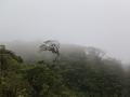 Een dag later rijden we op weg naar Panama door het regenwoud en het wegdek wordt glad door de regen,