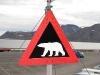 geen ijsberen meer,