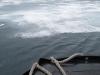 en varen richting kust