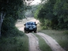 Dan rijden we het Wilpattu Nationaal Park in.