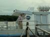 waar we in vijf kwartier heenvoeren met deze catamaran.