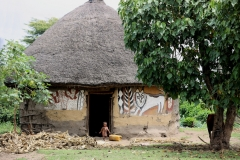 dat zijn de Alaba, die hun hutten zo prachtig beschilderen -