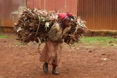 en ziet hij wel hoe er naar die markt toe  gesjouwd moet worden, ook door dit meisje!