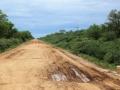 119 Dit is de weg naar de grens en we krijgen ook weer bus-pech in de Chaco...