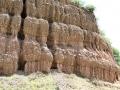 177 en komen - eenmaal op hoogte - langs bizarre rotsformaties