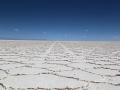 204 Het is een 'dode' woestijn, waarin bijna niets kan overleven,