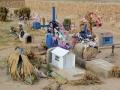 221 met kruisjes, plastic bloemen en mini-huisjes voor de overledenen...