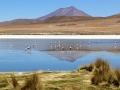 229 en dan is het zeker niet erg om bij deze Cañapa lagune te stoppen,
