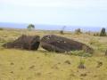 387 We zien hierna eerst heel veel omgevallen moai's,