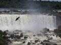 53 Overal zien we grote vogels cirkelen boven en naast het hard vallende water.